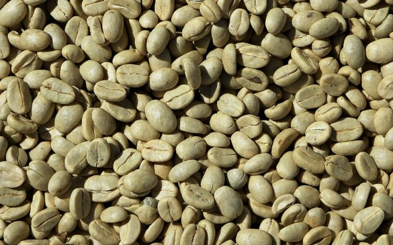 Amazing Benefits Of Green Coffee Beans For Weight Loss, Skin & Hair