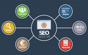 Top SEO Trends You Need To Follow In 2019 To Take Yourt Business To Success!